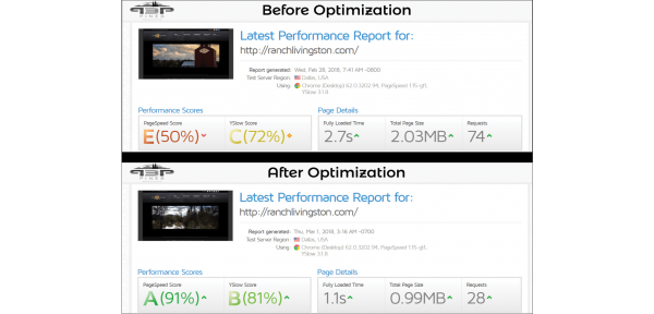 Website Optimization Results Graphic 1